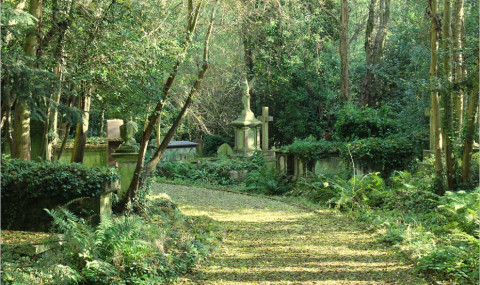 Le cimetière de Highgate (Highgate Cemetery) à Londres, un lieu féerique