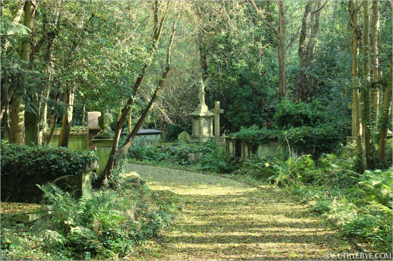 Les allées du cimetière de Highgate à Londres