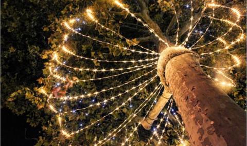 Noël à Paris : magie autour des Champs-Elysées