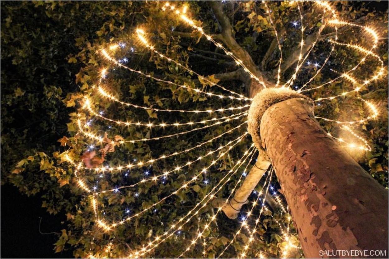 Noël à Paris - Les arbres illuminés