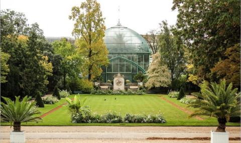 Serres d'Auteuil : un jardin plein d'exotisme hors des sentiers battus à Paris
