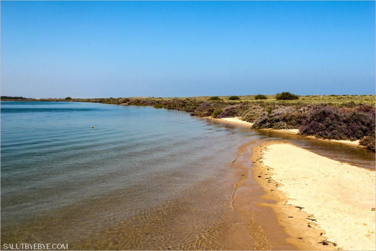 La lagune de la Ria Formosa au Portugal, près de Tavira