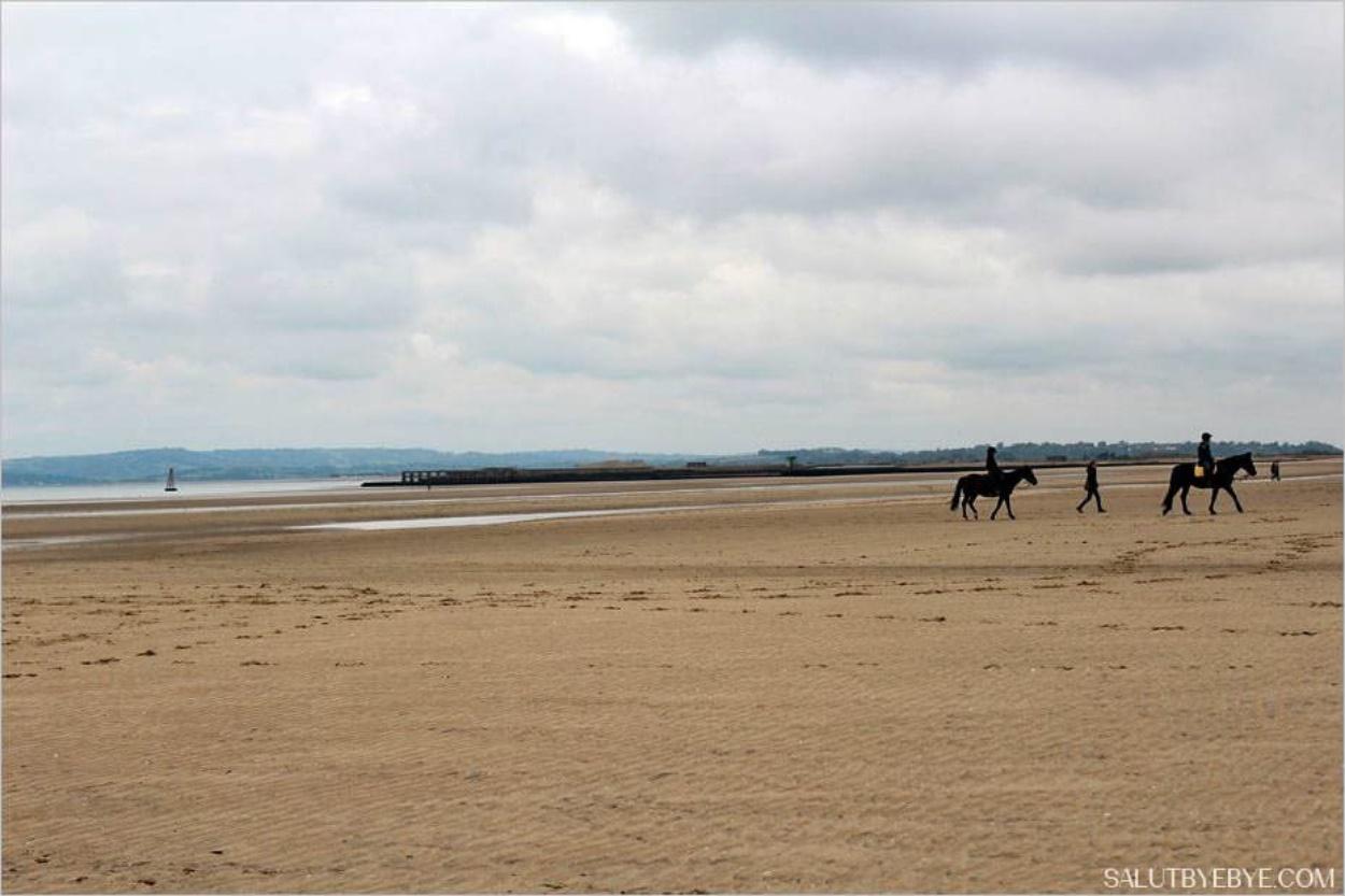 Chevaux à Camber Sands et estuaire de la rivière Rother