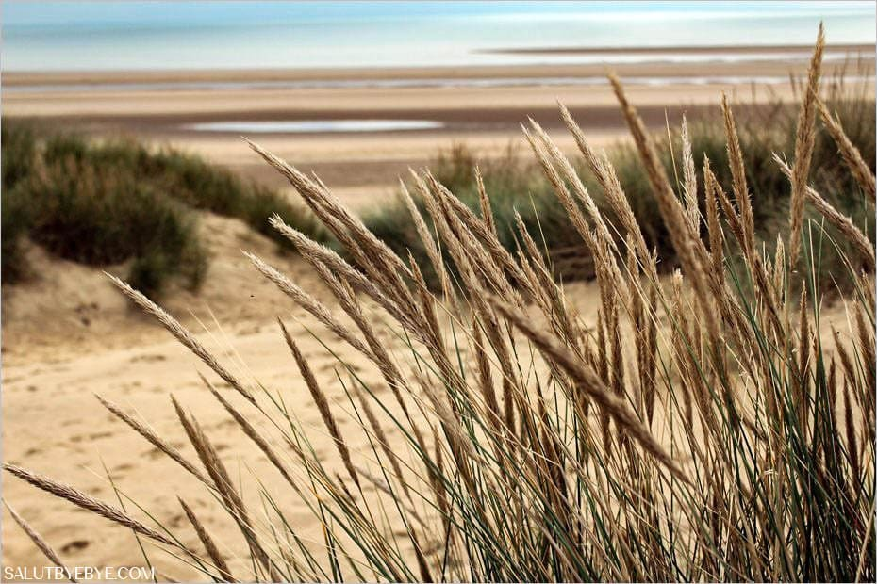 Camber Sands, plage du Sussex