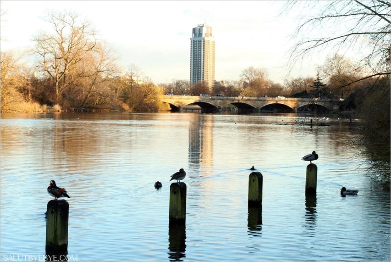 Kensington Gardens à Londres et la Serpentine