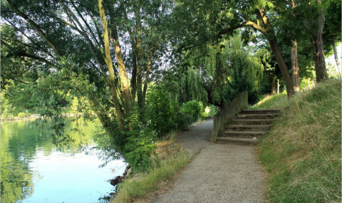 Bords de Marne : entre Champigny et La Varenne, la nature près de Paris