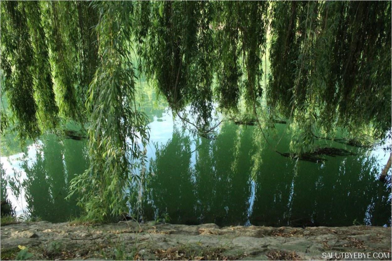 Sentier des bords de Marne de Champigny à la Varenne