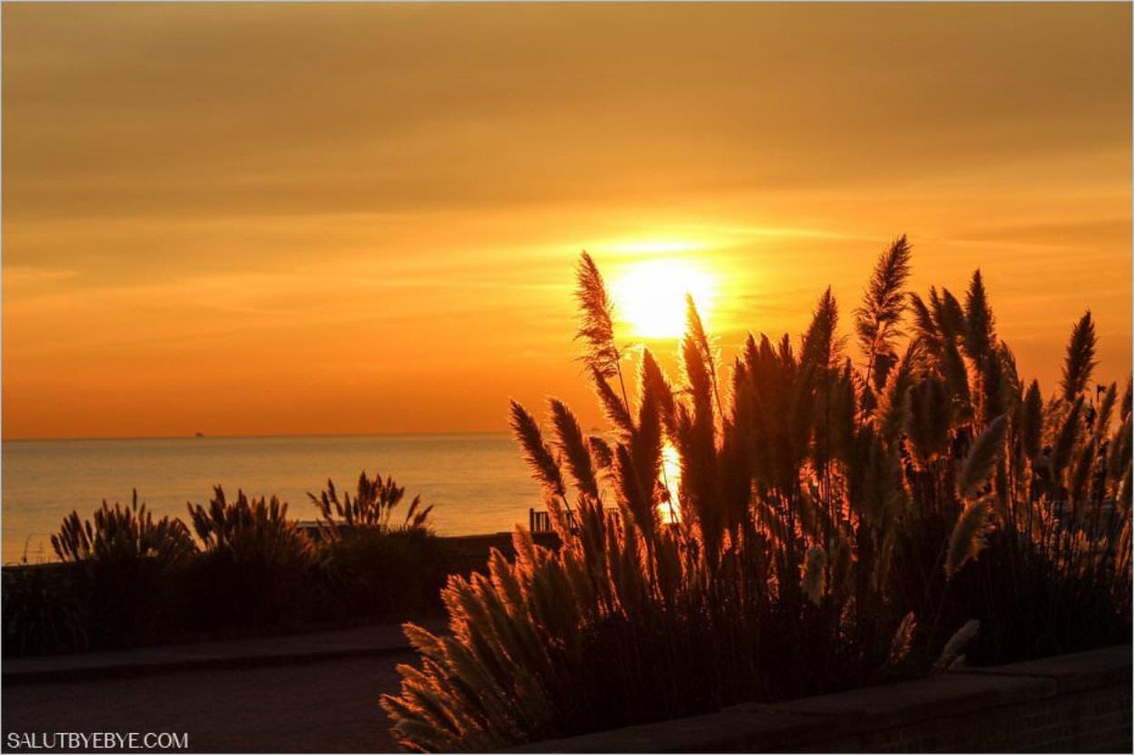 Coucher de soleil sur la plage de Brighton