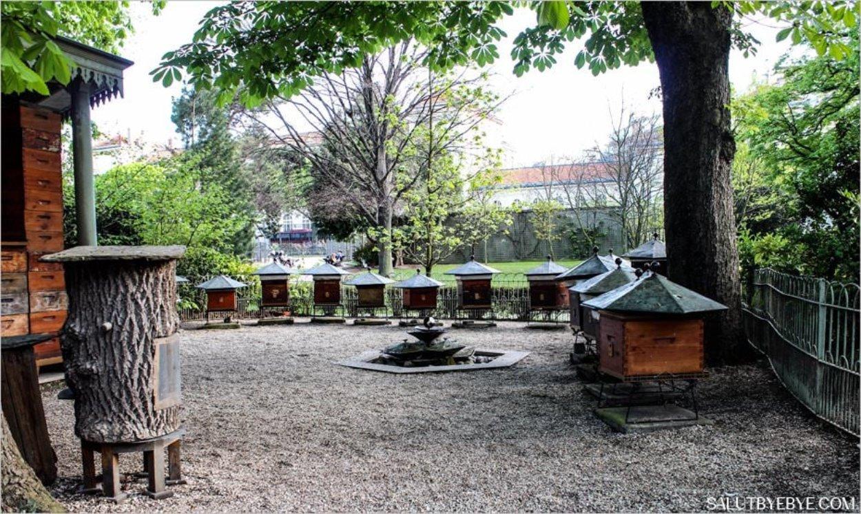 Les ruches du Jardin du Luxembourg