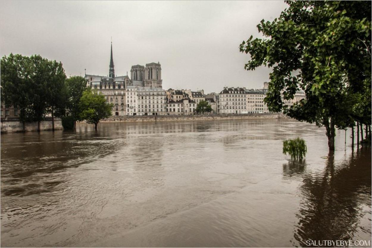 Crue de la Seine en 2016 à Paris - Notre Dame à l'arrière-plan