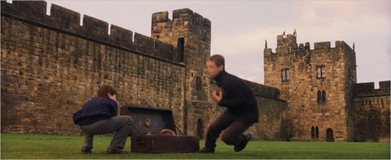Harry essaie d'intégrer l'équipe de Quidditch
