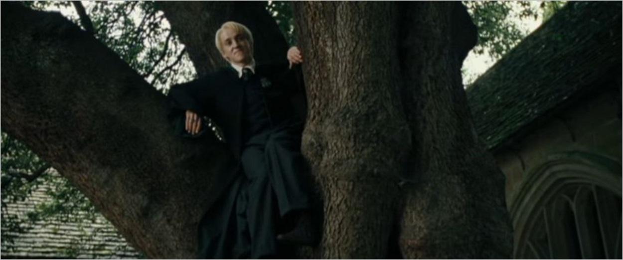 Malfoy, juste avant d'être transformé en furet