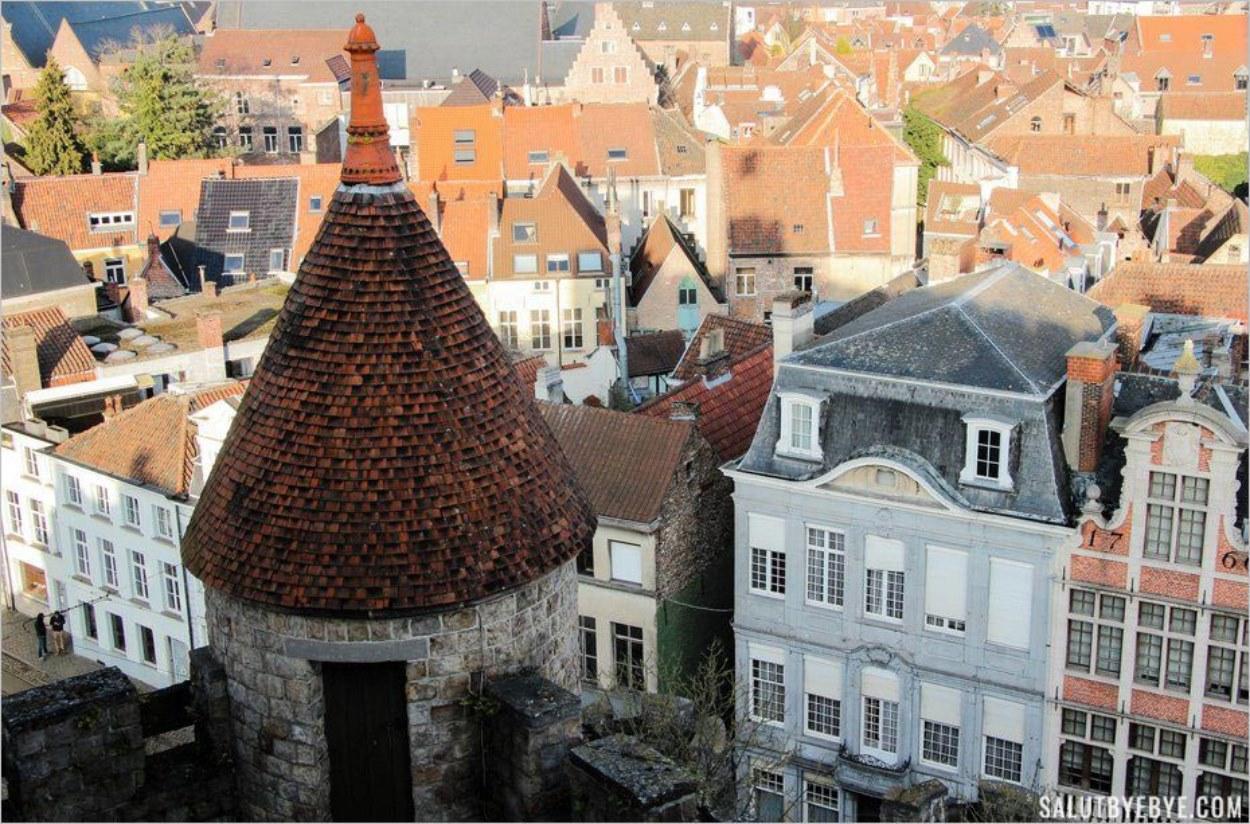 Une tourelle du château