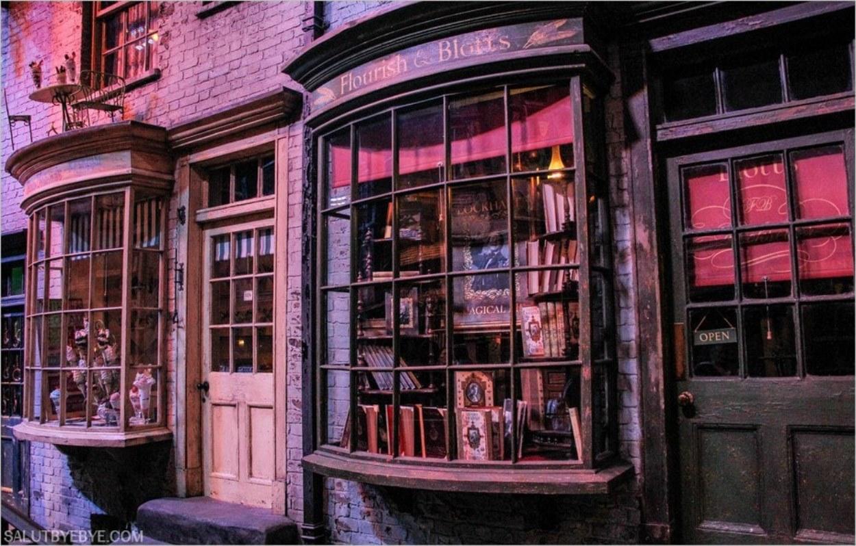 Fleury et Bott, la librairie des magiciens
