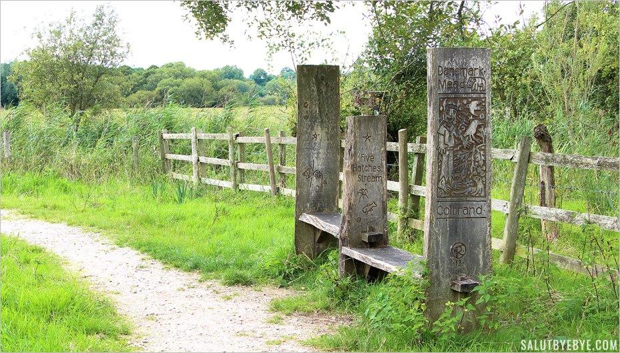 Les bancs en bois de la réserve de Winnall Moors