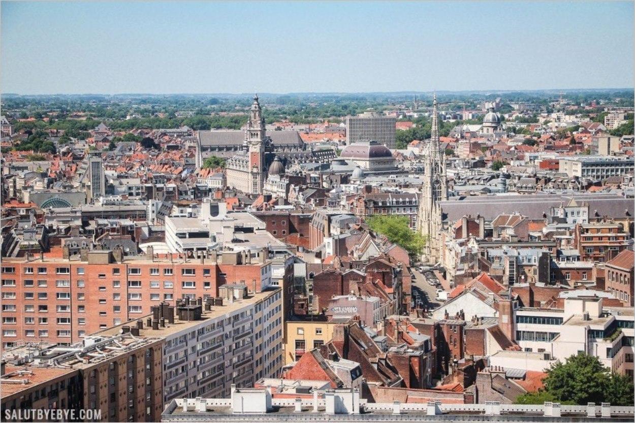 Le centre ville de Lille depuis le beffroi