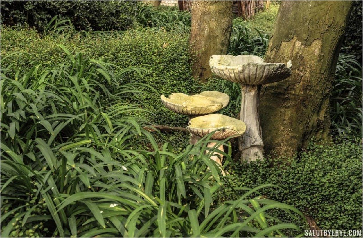 Aux abords du Jardin des Orchidées