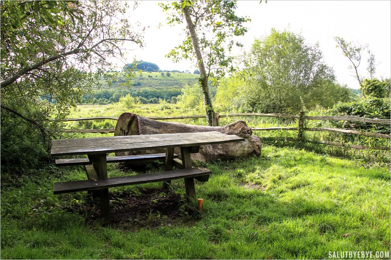 Une table de pique-nique au coeur des Water Meadows