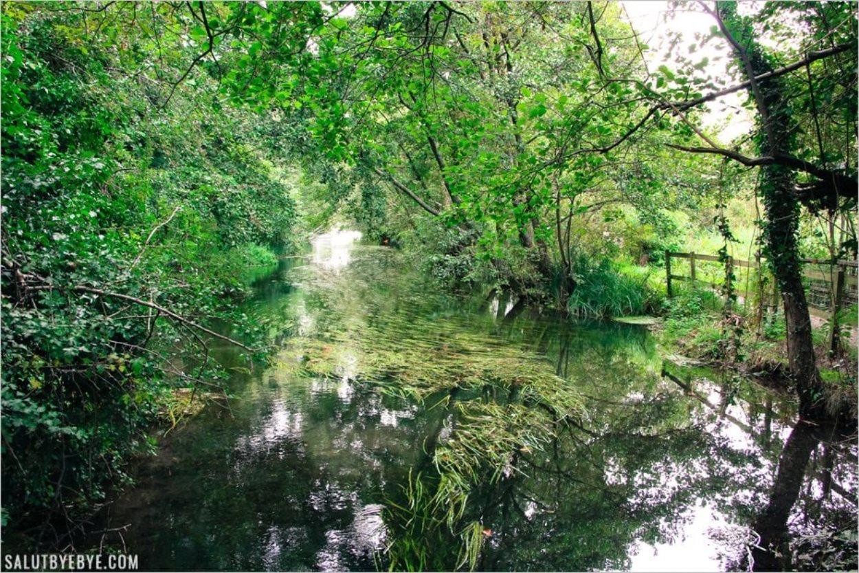 La paisible rivière Itchen à Winchester