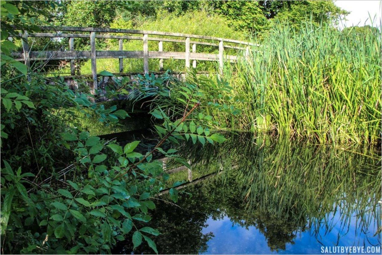 Reflets sur la rivière Itchen à Winchester