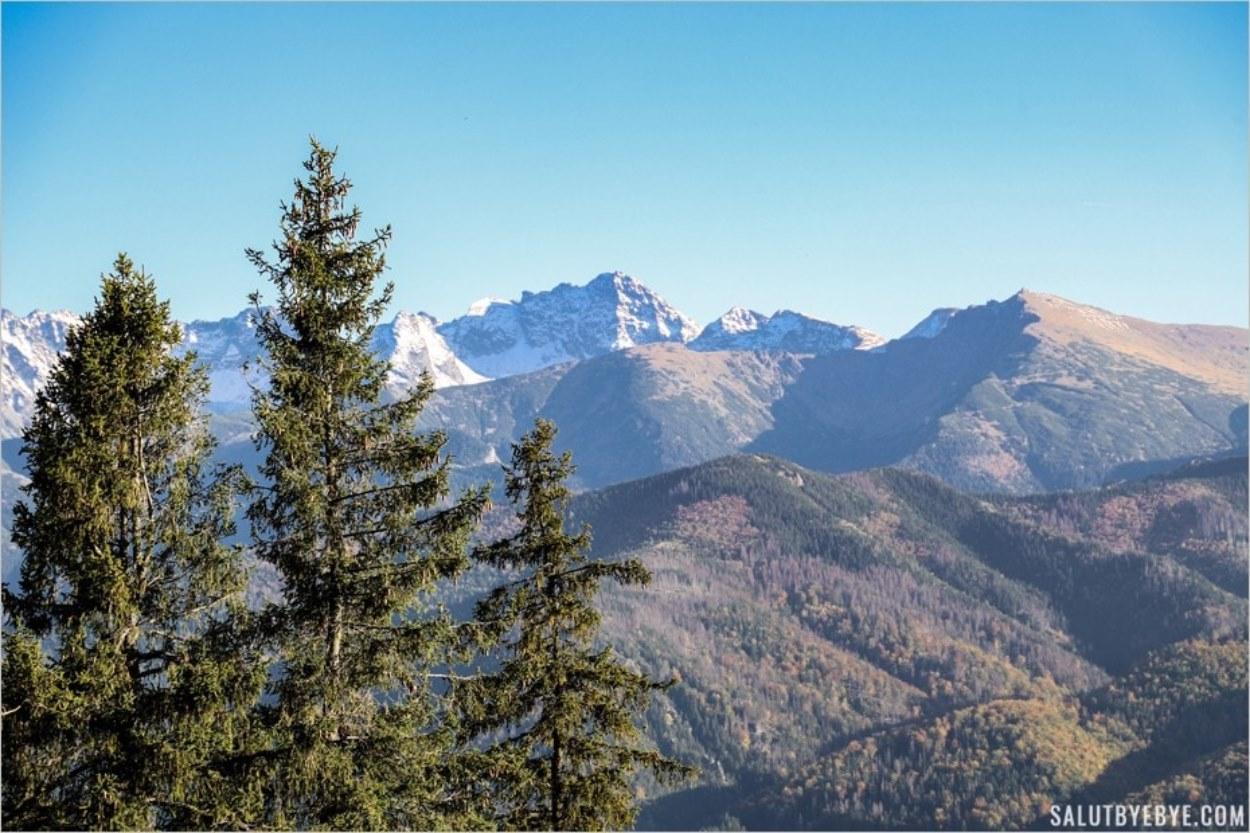 La vue depuis le mont Gubalowka