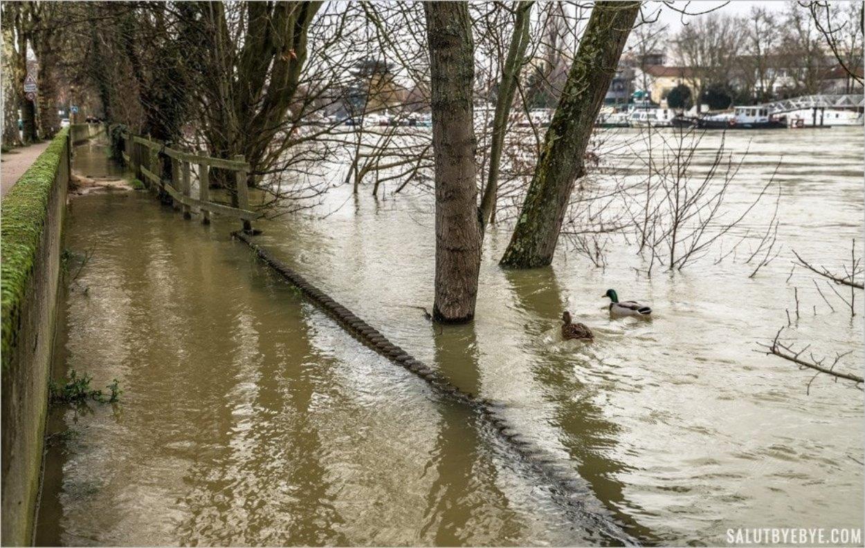 La crue de la Marne en 2018 - Joinville-le-Pont