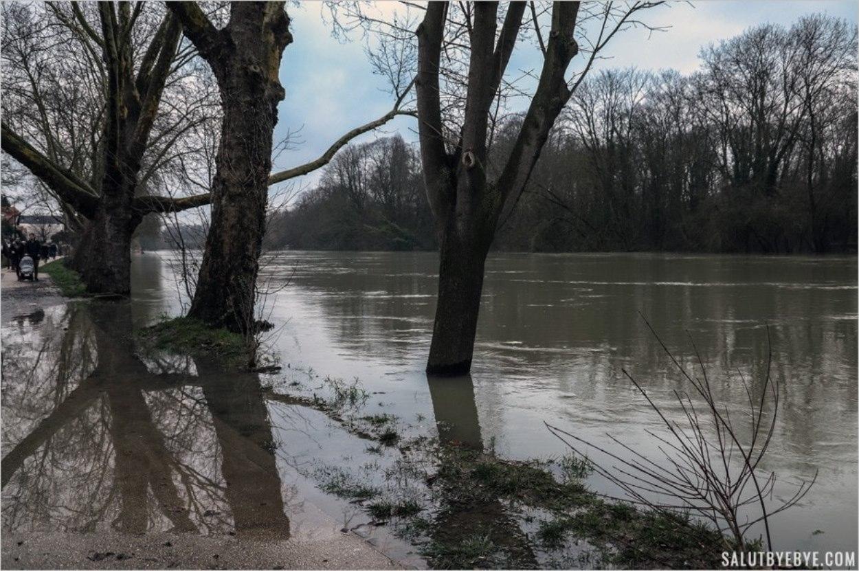 La Marne à Nogent pendant la crue