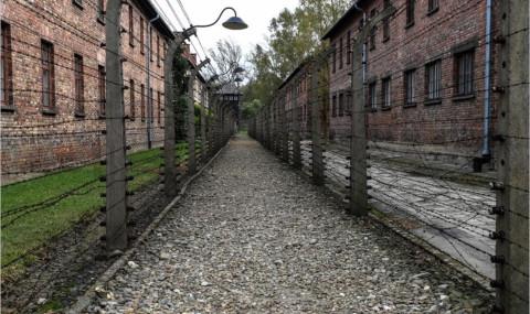 Aller dans le camp d'Auschwitz Birkenau : cette journée inscrite dans ma mémoire