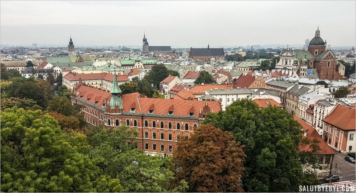 Vue depuis la Cathédrale du Wawel