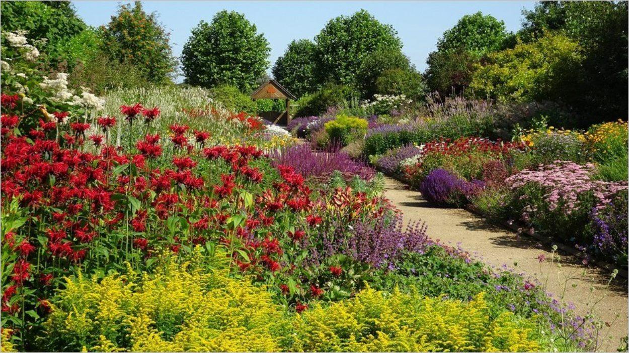 Breezy Knees Garden
