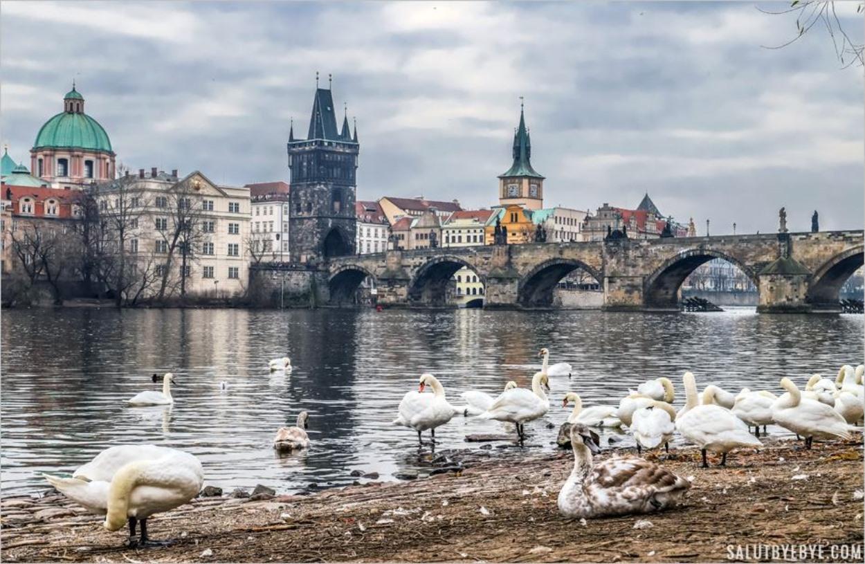 11 endroits pour profiter d'une belle vue de Prague