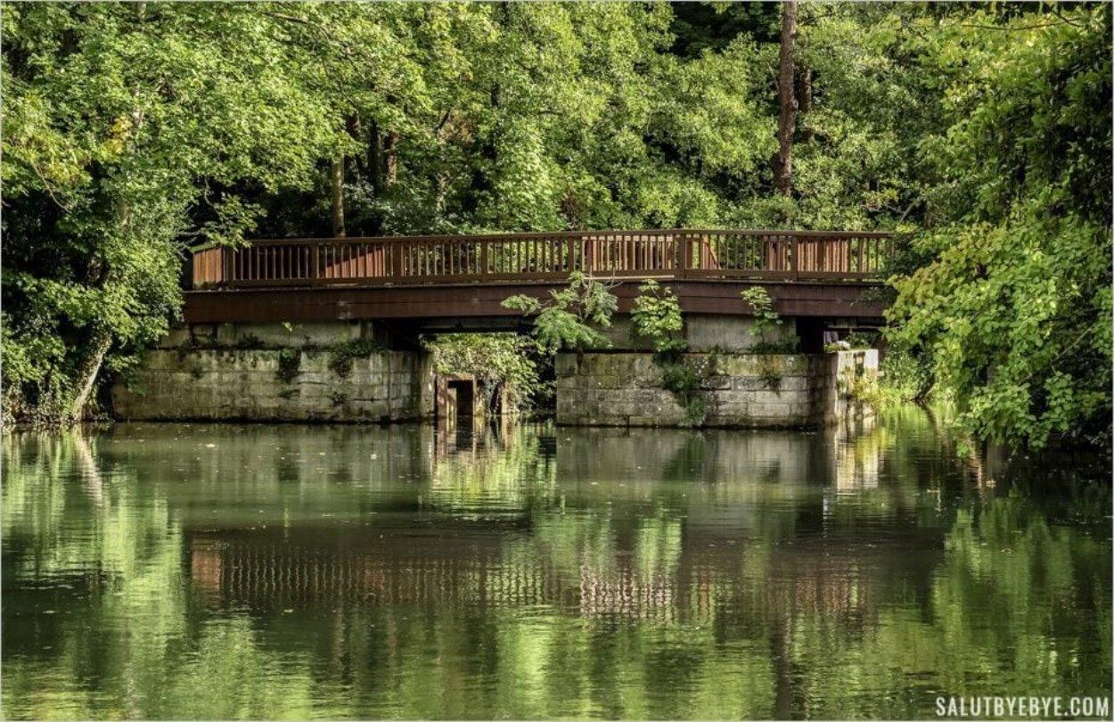 Pont de bois vers l'île de la Guyère