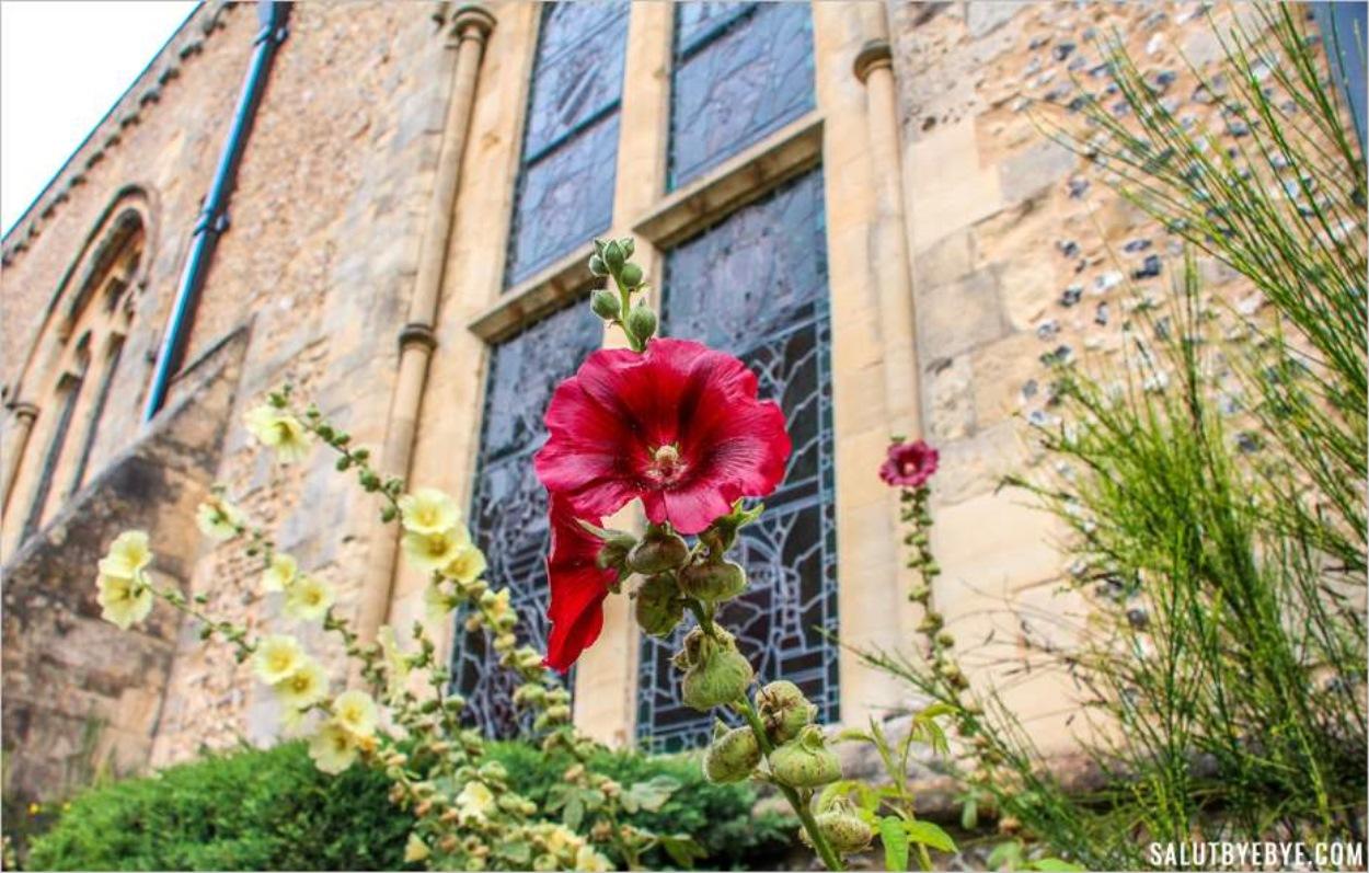 Le jardin qui jouxte le Great Hall de Winchester