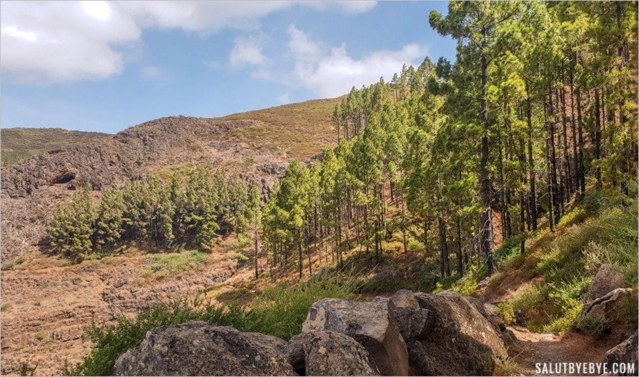 Chemin de randonnée vers la Fortaleza de Chipude