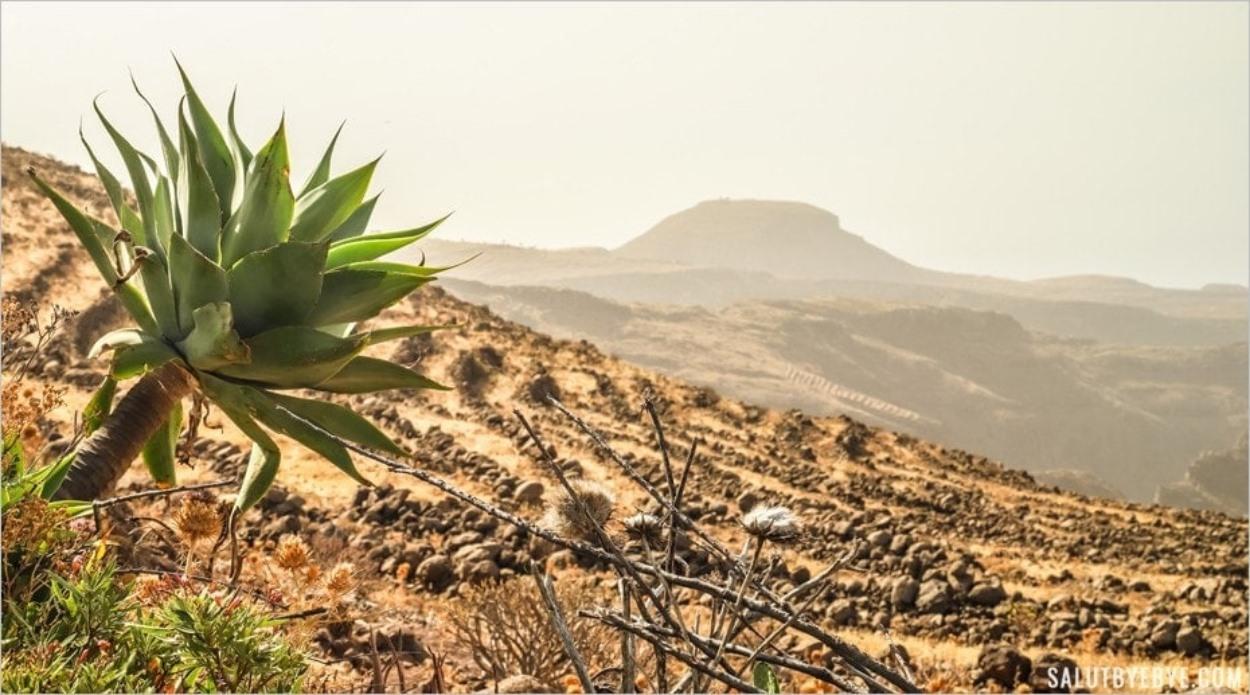 Les paysages de La Gomera près d'Igualero