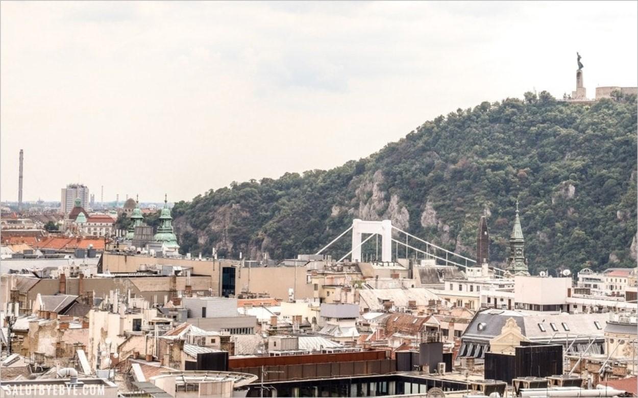 Le pont Elisabeth à Budapest en Hongrie