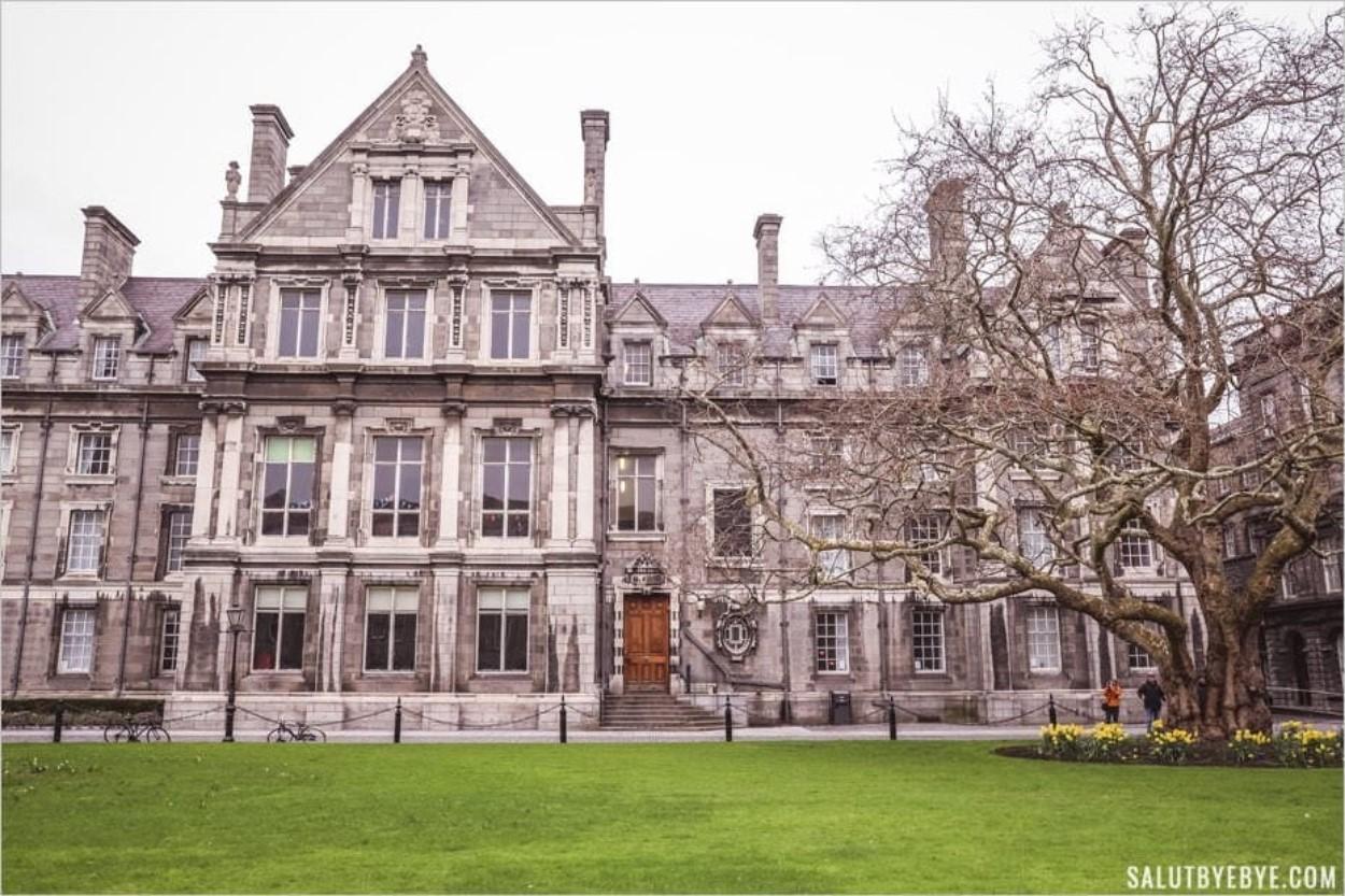 Bâtiment des societies à l'université de Dublin