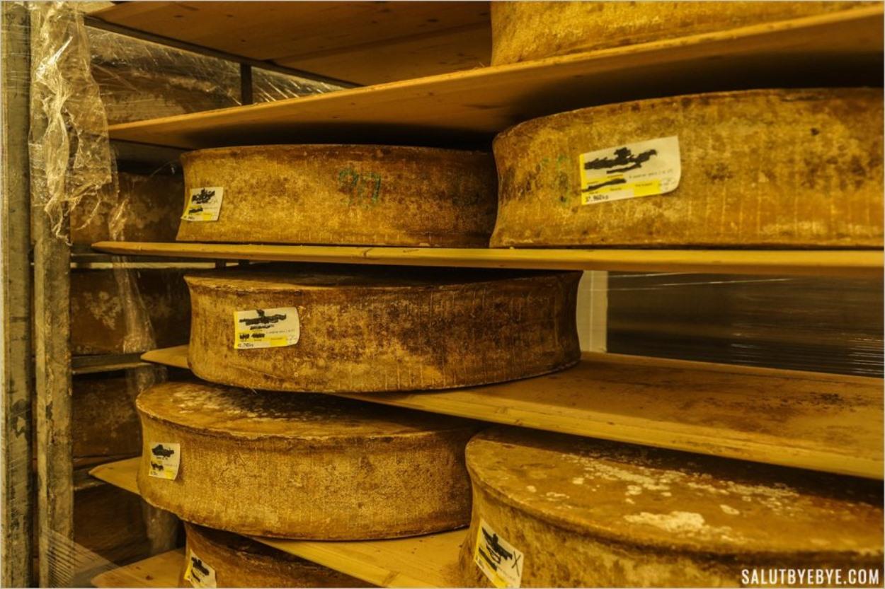 Visite du marché de Rungis - Meules de fromage