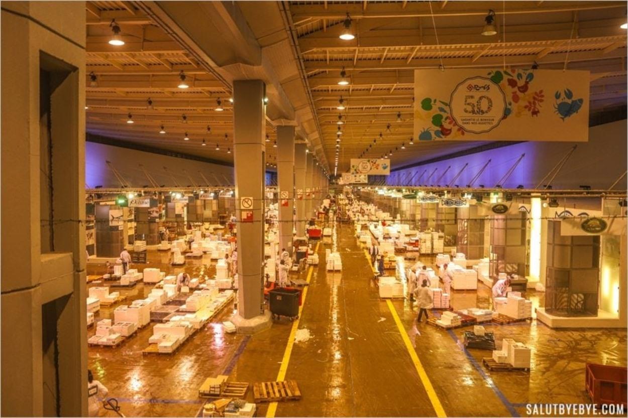 Visite du marché de Rungis : pavillon de la Marée