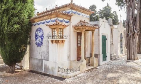 Visite du cimetière Dos Prazeres à Lisbonne, le «cimetière des Plaisirs»