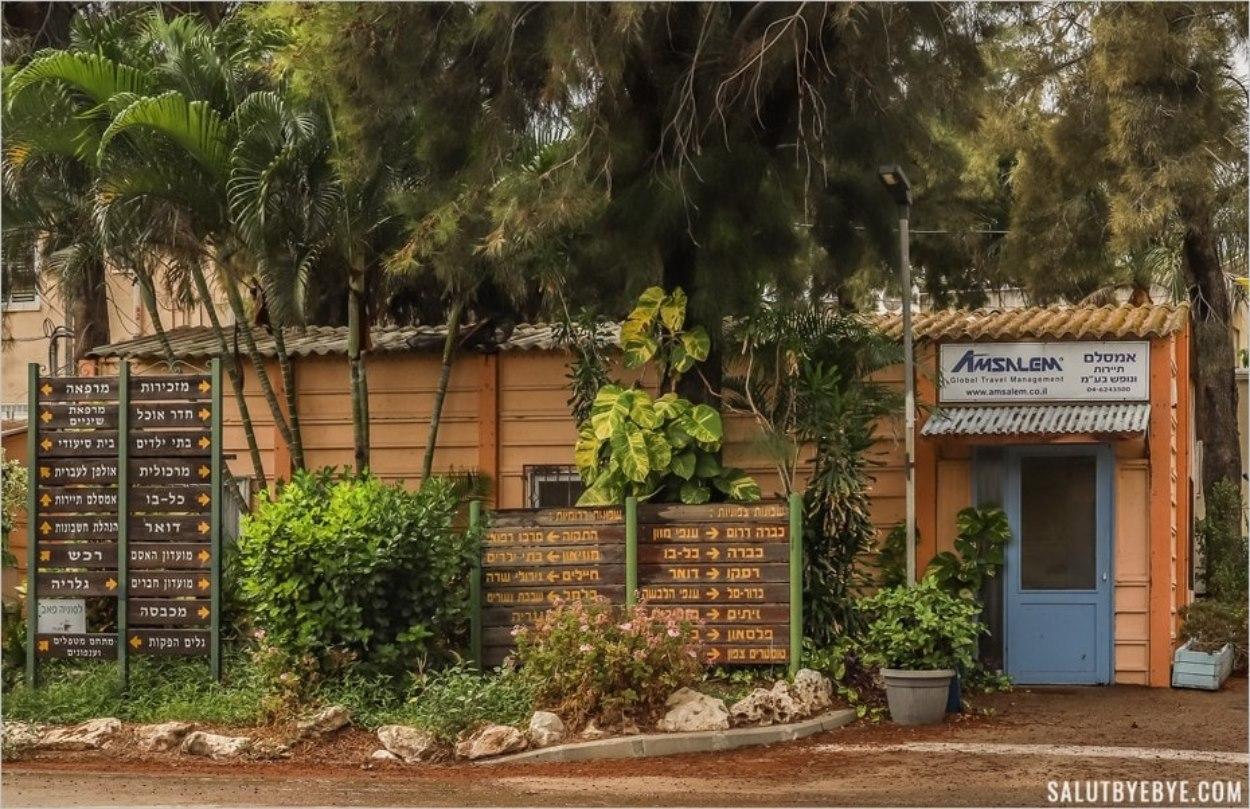 L'agence de voyage du kibboutz