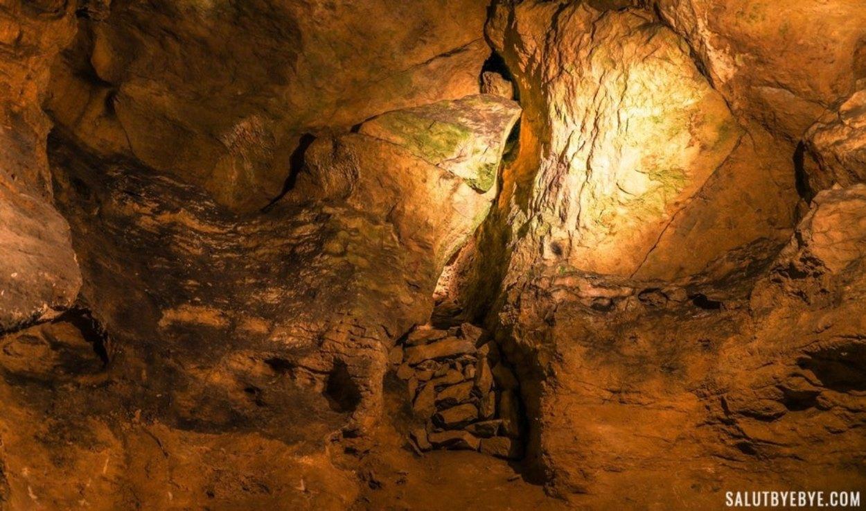 Impact du tourisme - Les roches verdissent au contact de la lumière
