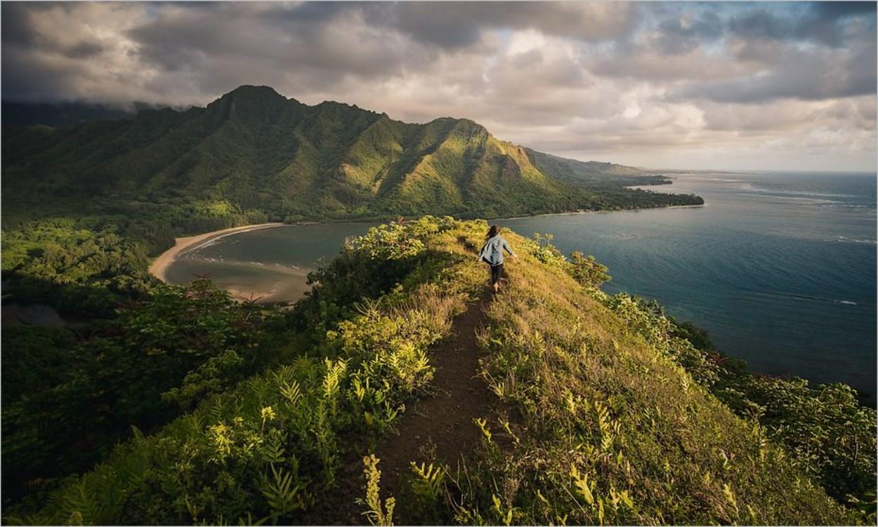 Aller au soleil en hiver à Hawaï