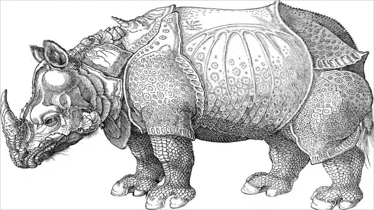 Le rhinocéros d'Albrecht Dürer