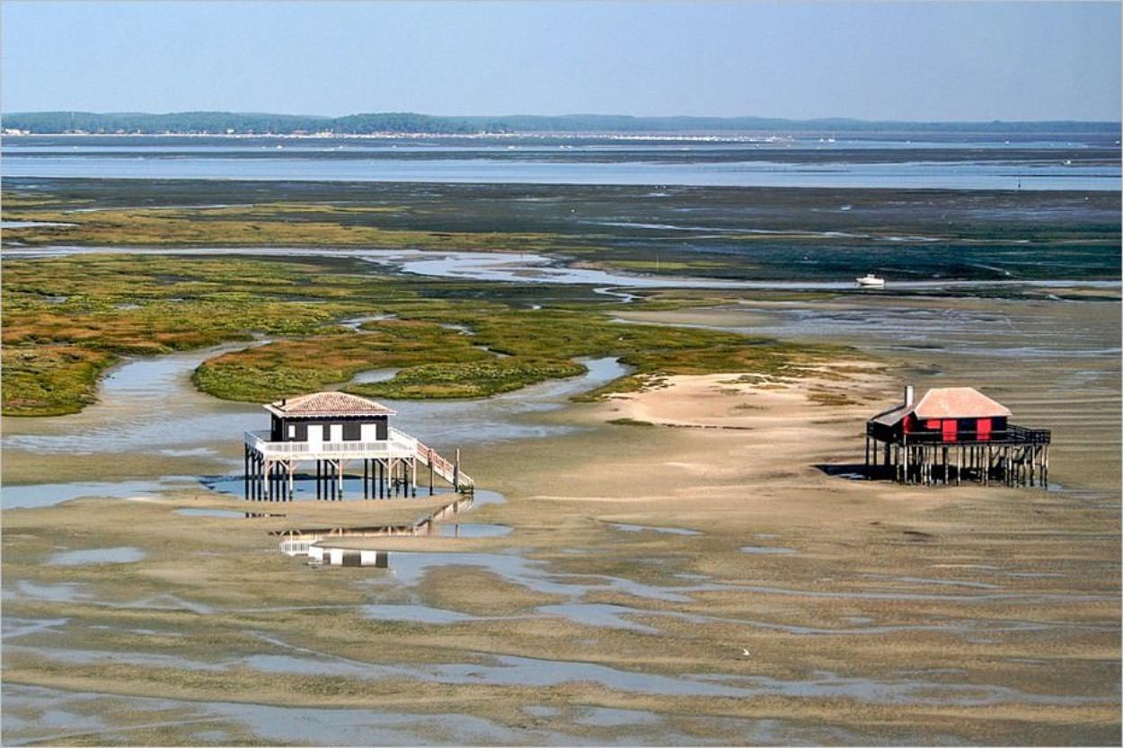 Les cabanes tchanquées sur le Bassin d'Arcachon