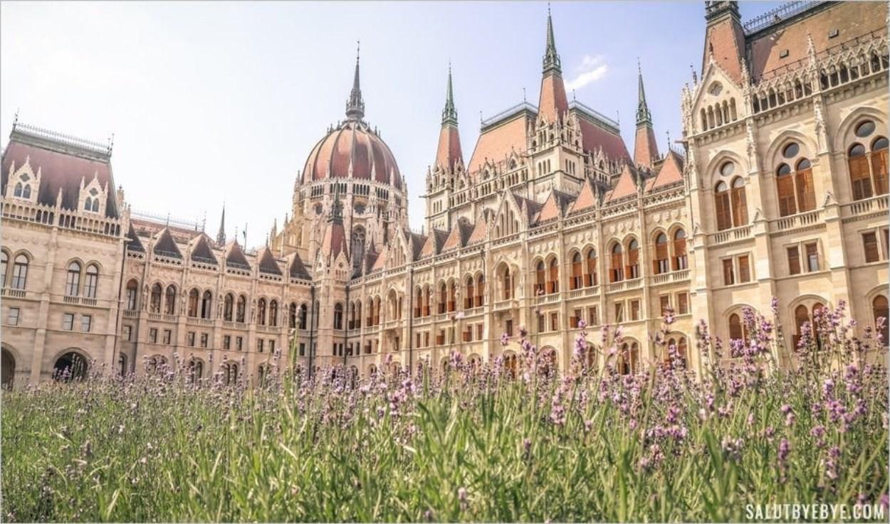 Fleurs aux abords du Parlement de Budapest