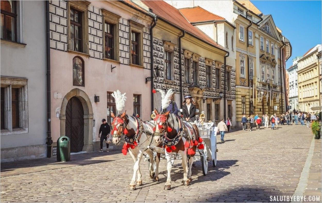 Les calèches dans le centre historique de Cracovie