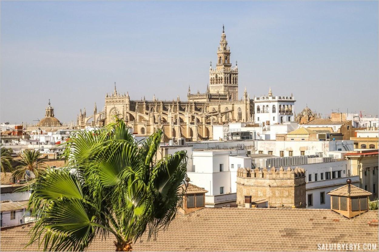 Vue sur la cathédrale de Séville depuis la Torre del Oro
