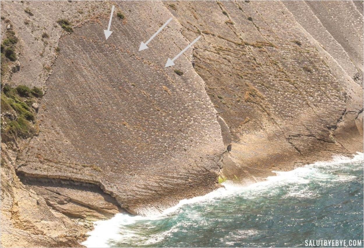 Empreintes de dinosaures au Cabo Espichel