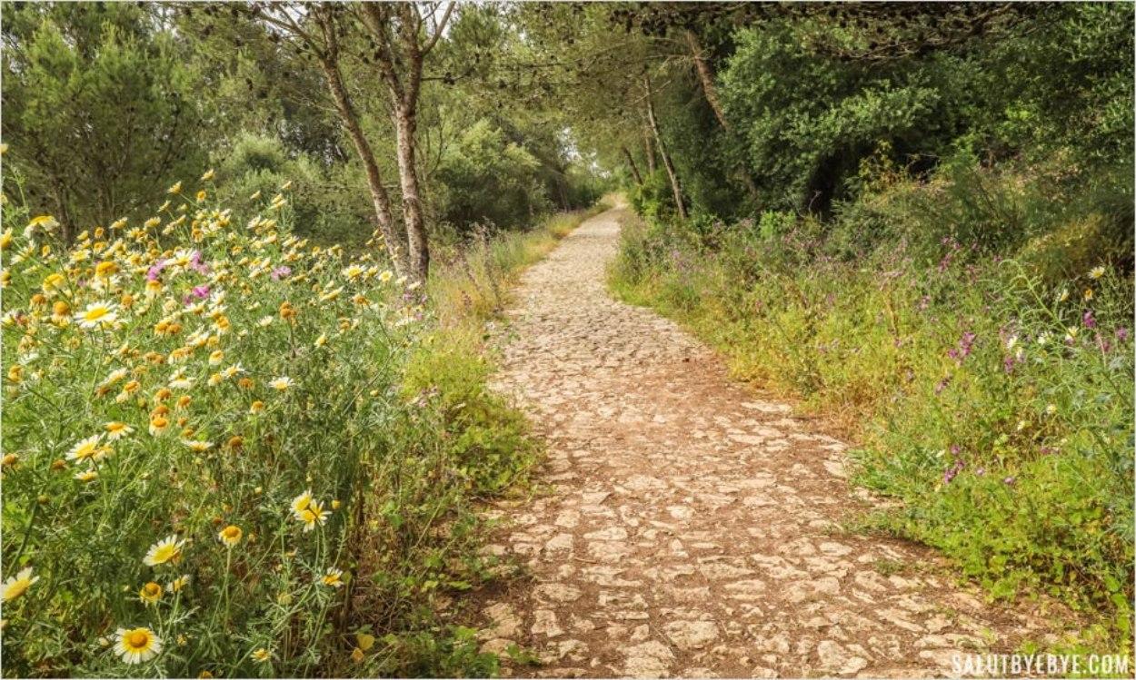 Sentier de randonnée vers le château de Sesimbra au Portugal